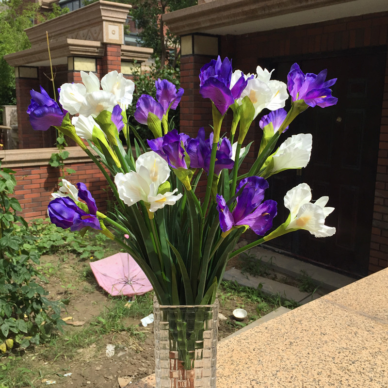 Special offer high quality simulation flower orchid Alice gentleman ...