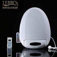 Smart Heated Toilet Seat Remote Control Intelligent Bidet Toilet Seat Heating WC Sitz Automatic Female Buttocks Washing Drying