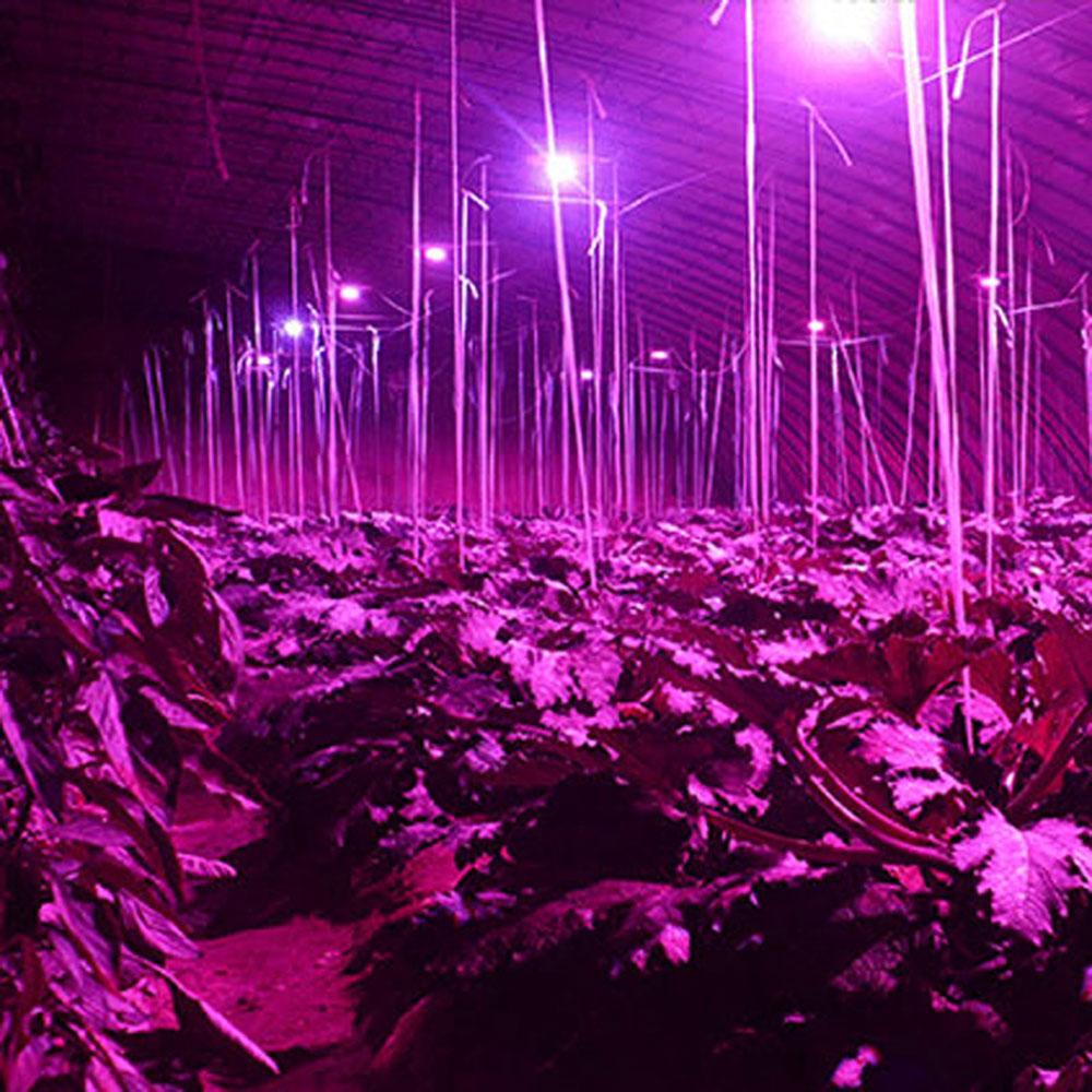 5pcs Led Grow Light Full Spectrum Led Plant Lamp 18 28LEDs ...