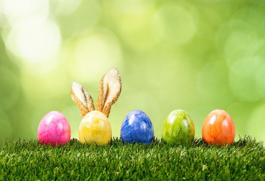 Laeacco Green Grass Spring Easter Eggs Rabbit Ear Polka Dots Child Portrait Photography Backgrounds Photo Backdrops Photo Studio