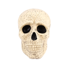 Human Skeleton Head Decoration Plastic Halloween Haunted House Bar Decor