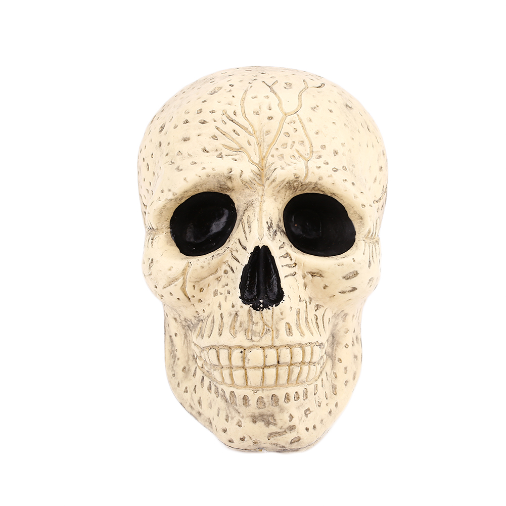 human skeleton head decoration plastic halloween haunted house bar decorchina - Halloween Skeleton Head