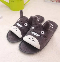 Cute Japanese Totoro Floor Shoes Slippers