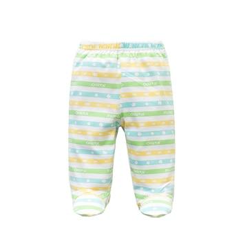 Set of Five Baby Boys' Cotton Pants 4