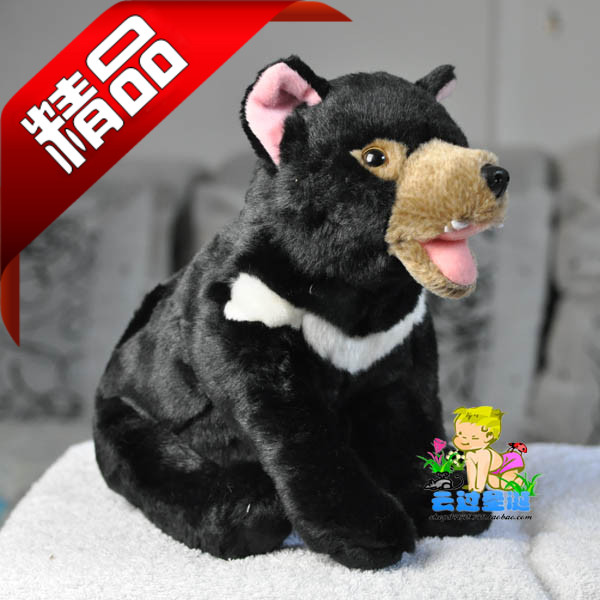 Black fluffy dog red tongue dog black dog sitting position Crescent white dog cool screaming mask w tongue white black red