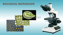 Hot Sale Made in China 40X-1600X Trinocular Biological Microscope BM-L2000A With 1.30M Pixel CMOS Digital Camera