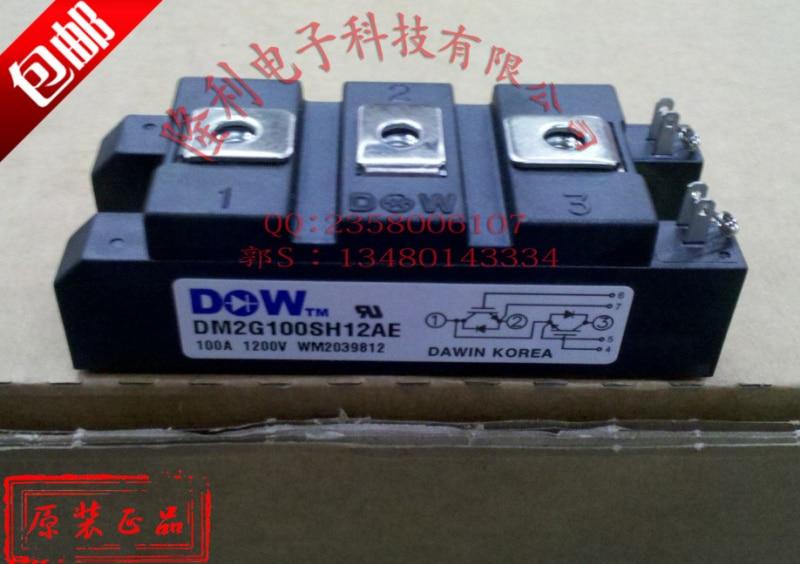 Authentic DM2G100SH12AE/DM2G150SH12AE/DM2G75SH12A brand new genuine authentic David цена