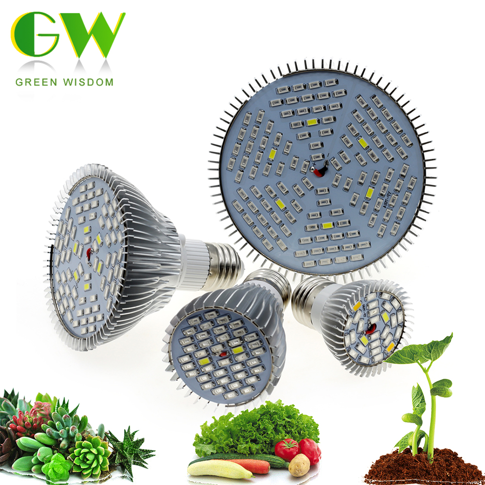 Full Spectrum LED Bulb For Plant Growth E27 Grow Light 6W/10W/30W/50W/80W LED Phytolamps For Indoor Plants Flowers Grow Tent Box