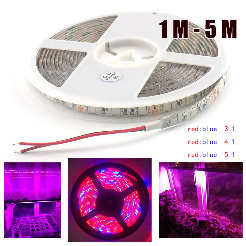 1M 5M LED Plant Grow Light Strip 12V Lamp 5050 Growing Lamp For Veg Flower Hydroponics Indoor Greenhouse Seeds Garden
