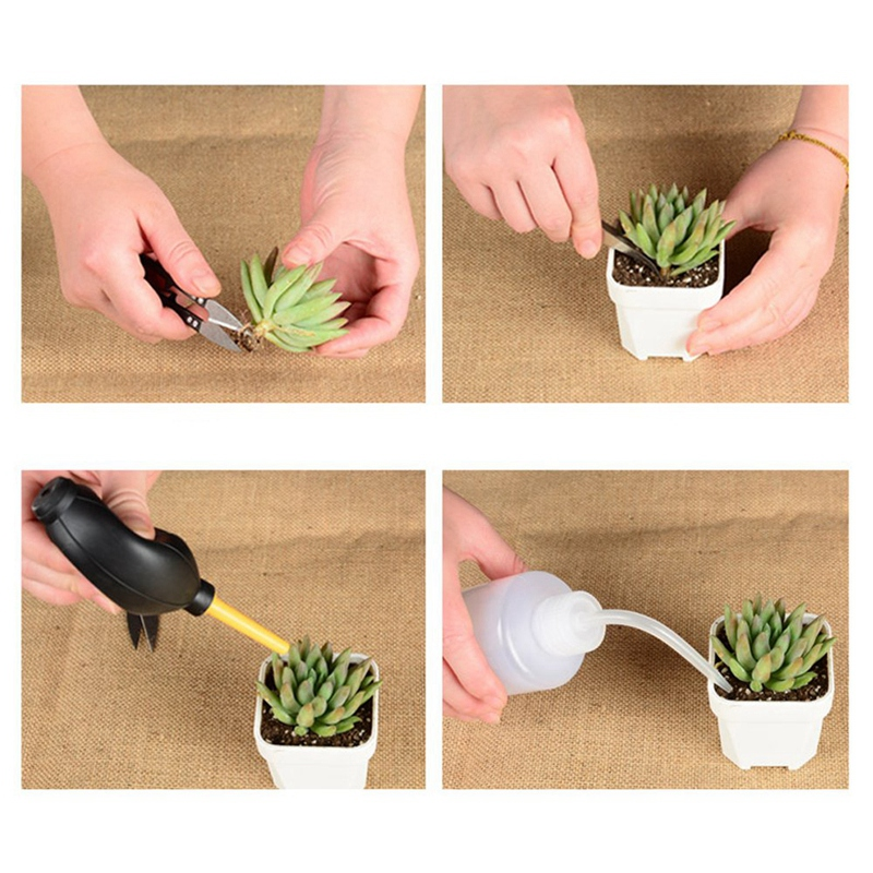 13 шт. мини Ручные садовые инструменты Инструменты для пересадки сочные инструменты миниатюрные посадки Набор садовых инструментов