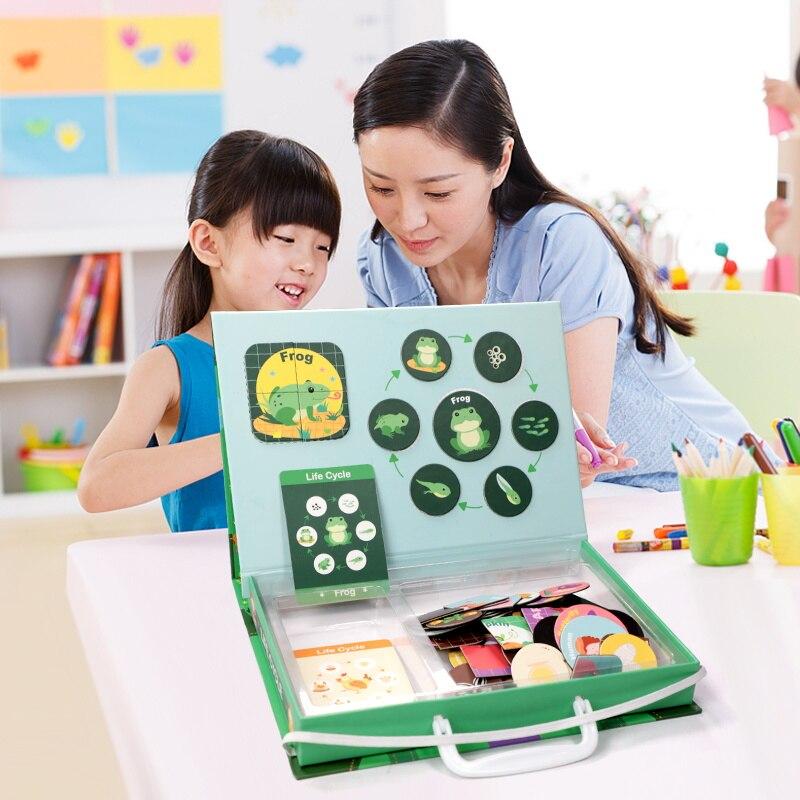 Magnetische Montessori Puzzle Schiefen Lebensdauer Zyklus von Tier Menschliches Wachstum Puzzles Pädagogisches spielzeug Frühen Kindheit Bildung Kinder Spielzeug-in Puzzles aus Spielzeug und Hobbys bei  Gruppe 2