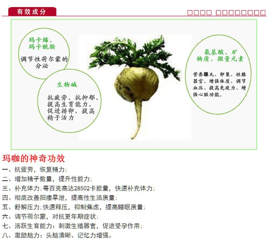 Hot sale 1kg bulk packing Maca from China planting base hot s