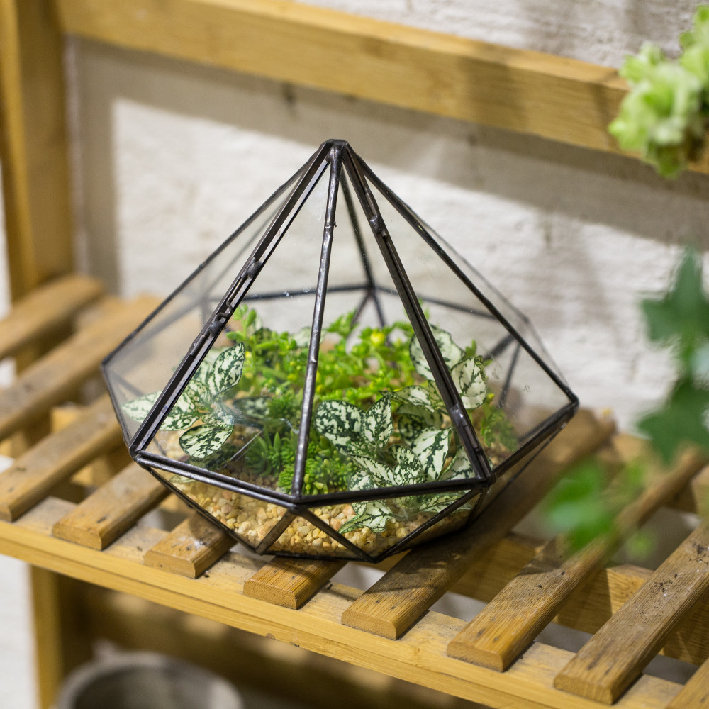 Garden Tabletop Diamond Glass Geometrisk Terrarium Balkong Display Planter for Sukkulenter Planter Dekorativ Blomsterkrukke med Cover