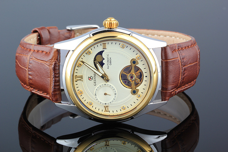 Automatical Mechanical Watches Men Luxury Brand Watch Male Clock Leather Wristwatch Men Skeleton Casual Business gold Watch automatical mechanical watches qlls men luxury brand wrist watch male clock steel wristwatch men skeleton casual business watch