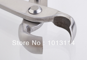 Image 4 - Coupe bordures concave de 210mm, niveau de qualité standard, 3Cr13, outils pour bonsaï en acier inoxydable fabriqué par la société tianbonsaï