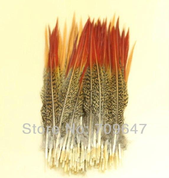 """50 шт./лот 6-"""" 15-20 см перья фазана золотые красные наконечники, Золотой фазан Красный наконечник перья"""