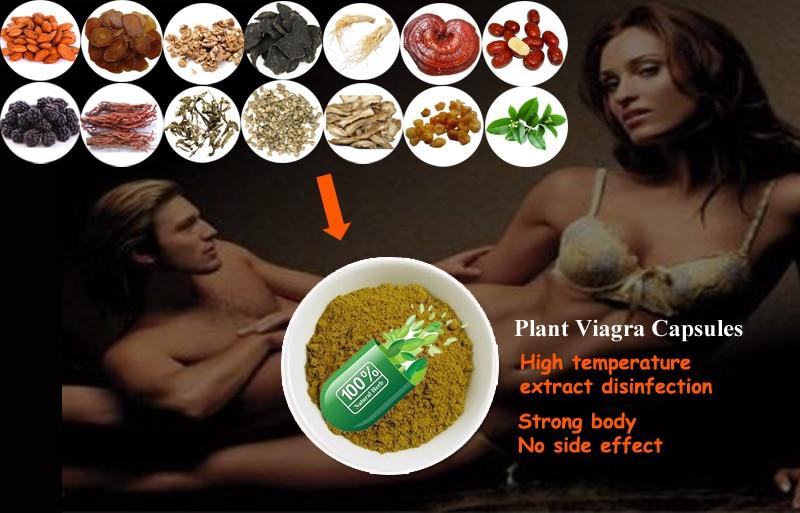 viagra fra pfizer
