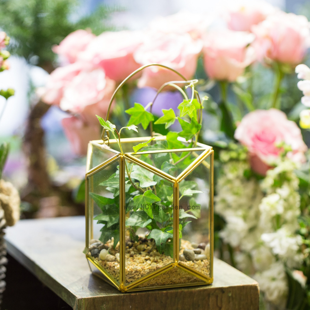 Geometric Glass Terrarium Lantern Tabletop Succulent Plant Hanging Vertical  Garden Modern Decor Flower Pot Planter Candle Holder