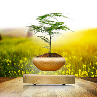 Magnetic levitation plant gifts magnetic levitation creative air potted high end fashion high tech ornaments