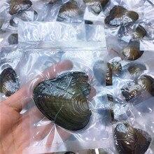 Вакуумная посылка, Пресноводный Жемчуг, маленькая Мидия, речная моллюска, жемчужина, одна моллюска, одна бусина, цвет случайный