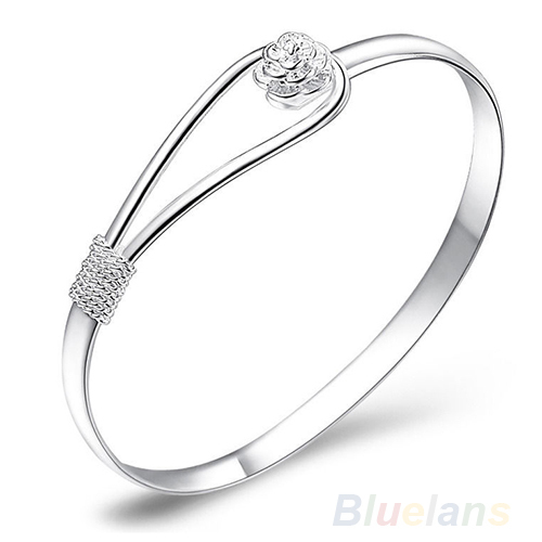 Jewelry Silver Simple...