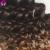 Ali Visón 3 Paquetes Ombre Armadura Del Pelo Rizado Rizado Rizado Pelo virginal Brasileño Paquetes Armadura Del Pelo Rubio Brasileño de la Onda Profunda pelo
