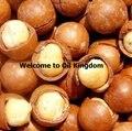 Free shopping 100% pure alemanha henry de óleos de base vegetal óleo de macadâmia Nut Oil Hair & Scalp Tratamento para Cabelos Secos e Danificados