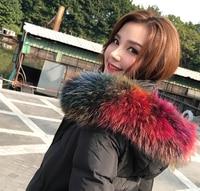 Women S Autumn And Winter Faux Fox Raccoon Fur Collar Down Coat Overcoat Hooded Collar Winter