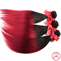 EVET Virgin Perivian Straight Hair Weaves Unprocessed Two Tone Ombre Silky Straight Human Hair Weavings 1pcs Hair Wefts 50g/pcs