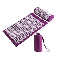 Dropshipping Acupressure Mat Massager Relieve Body Stress Pain Spike Acupuncture Mat Massage Cushion and Pillow Set with bag