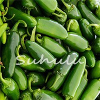 Free-Shipping-100-Pcs-bag-Jalapeno-Chile-Pepper-seeds-Fast-Growing-DIY-Home-Garden-Vegetable-Plant.jpg_200x200