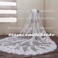 One Layer Lace Applique Wedding Veil Cathedral Length Bridal Veil with comb