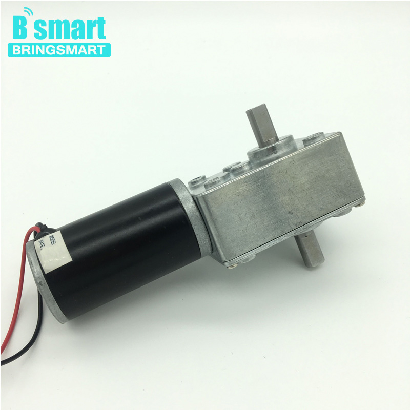 Bringsmart 12V 24V Double Shaft Worm DC Gear Motor High Torque Gears box Mini Turbine Worm Reducer Reversible Advertising Board