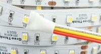 12VDC SMD3528-300-PWW Double Blanc Couleur Temp-Réglable Flexible LED Bande Lumière 60 Led Par Mètre