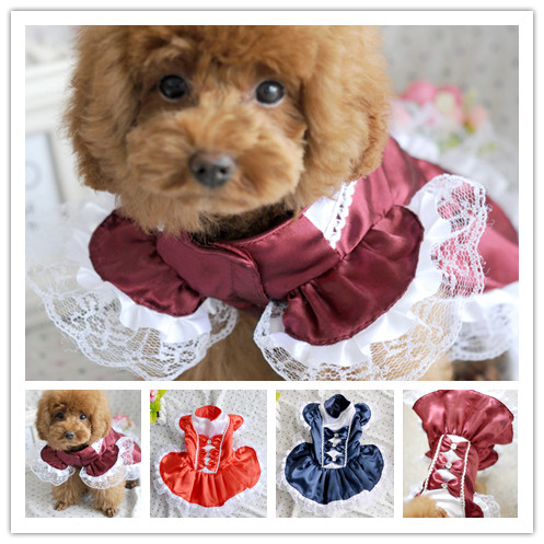 Wedding Outfits For Dogs - Wedding Photography