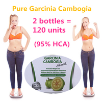 2 Bottles 120 Units Pure Garcinia Cambogia Weight Loss Supplement Burn Fat 95 HCA Slimming For