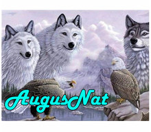 animals diamond painting white wolves daimond embroidery eagles puzzle pictures diamant mosaic beads canvas poster big size(China)