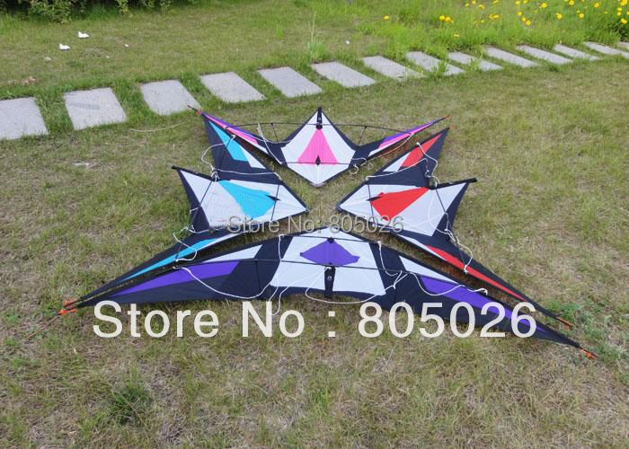 Free Shipping high quality 2.1m Immortal Sword dual line stunt kite with Control+Tools-loud sound albatross kite hot