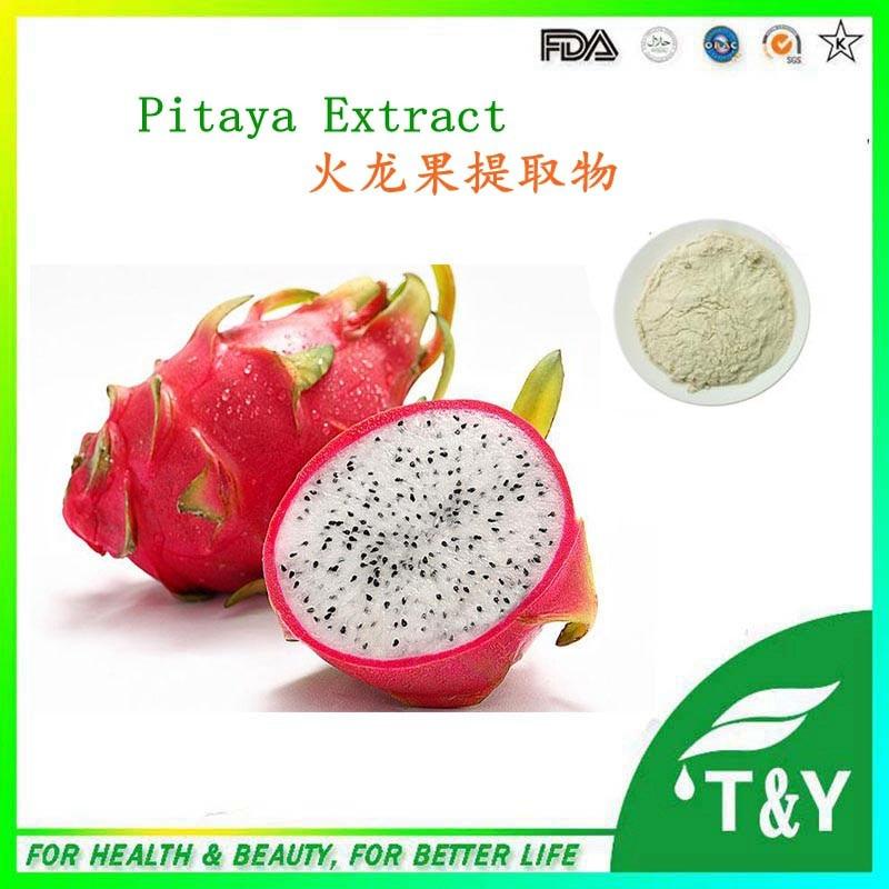 GMP Manufacturer Supply Natural Pitaya Juice Concentrate Powder/Pitaya fruit powder 900g/lot