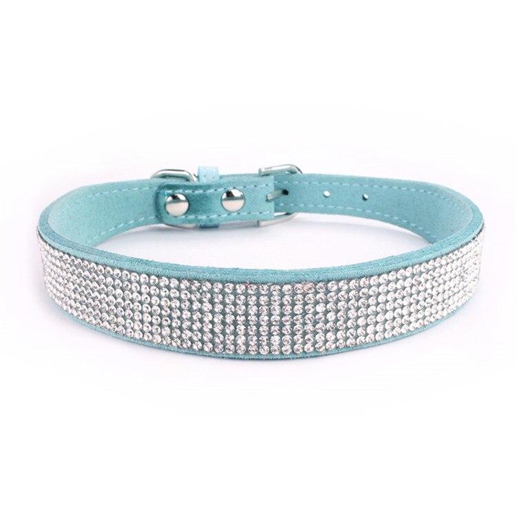 dogs collar (9)