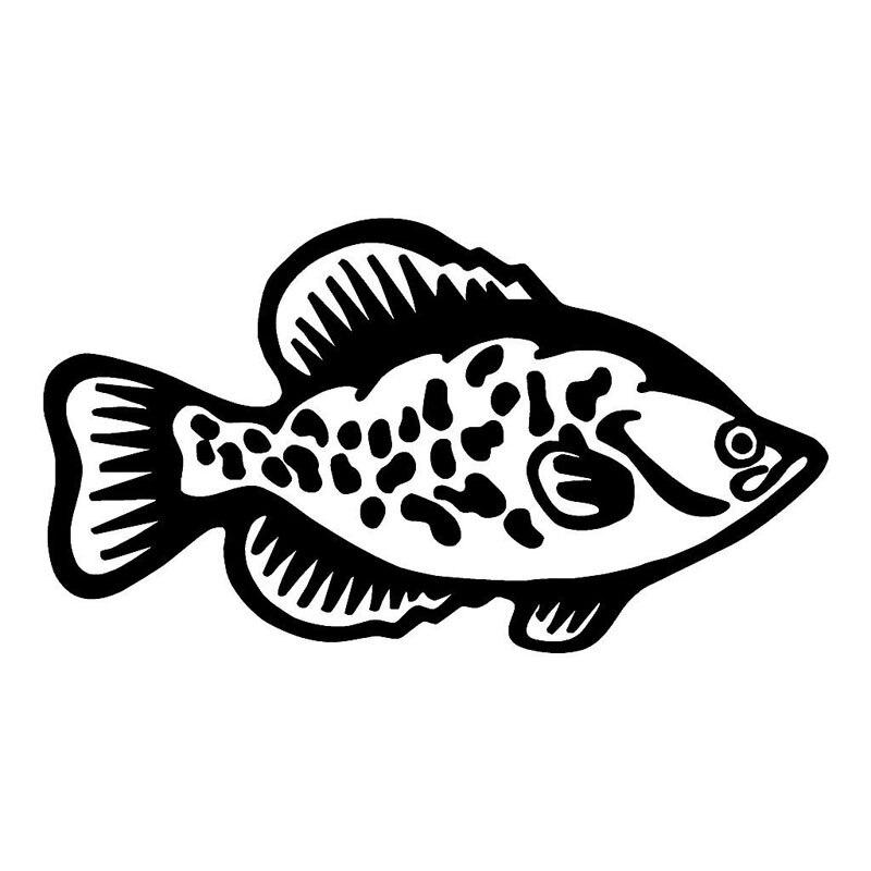 Aliexpress.com : Buy 22.912.7CM Crappie Fish Stylish Car