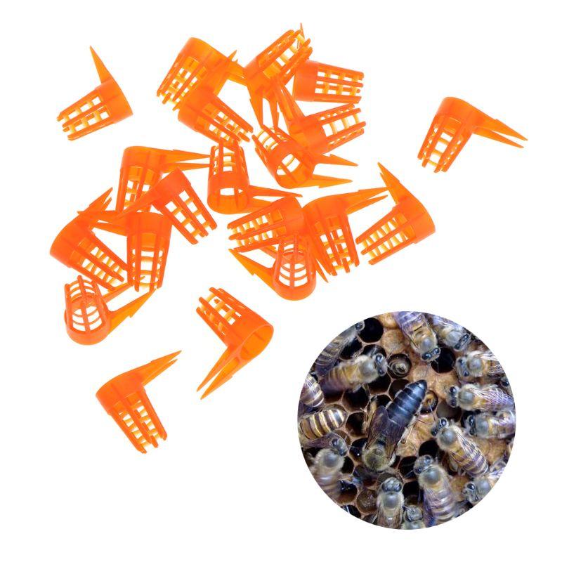 20 Pcs/Set Bee Queen Cap Protective Cell Cover Beekeeping Tools Beekeeper Equipment Plastic Cage Beekeeping Supplies C42