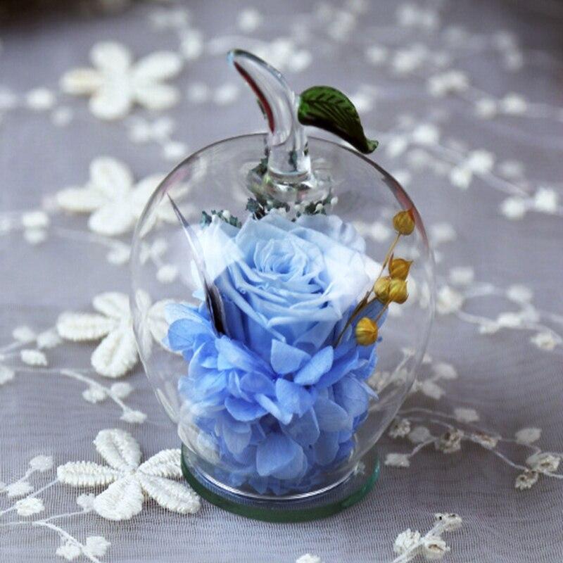 Manzana de cristal marco de la campana flores Preservadas habitación ...