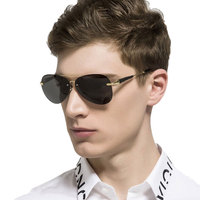 Famous Polarized Sunglasses 1
