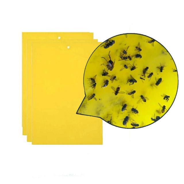 20/10/5pcs Strong Flies Traps Bugs Sticky Board Catching Aphid Insects Pest Killer Outdoor Fly Trap for Aphids Fungus GnatsLeaf