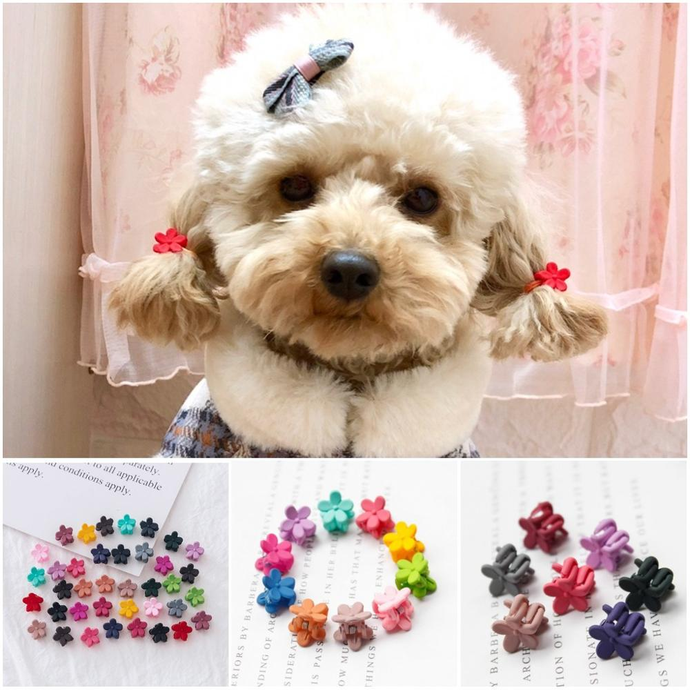 10 20 30pcs font b Pet b font Dog Grooming Accessories Products mini Small Dog Hair