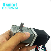 Bringsmart A58SW 42BY Stepper DC Stepping Geared Motors Worm Gear Motor 24V DC Motor 12V Self locking Micro Reducer Gearbox