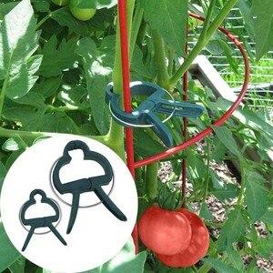 Image 2 - 20Pcs 나무 식물 꽃 모종 줄기 지원 정원 도구 봄 클립 내구성 비바람에 견디는 플라스틱 식물 클립