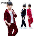V-TREE Spring Baby Girls Clothing Set Velvet Kids Suit Set Fashion Hoodies Pants Sport Suit For Girl Tracksuit Children Clothing