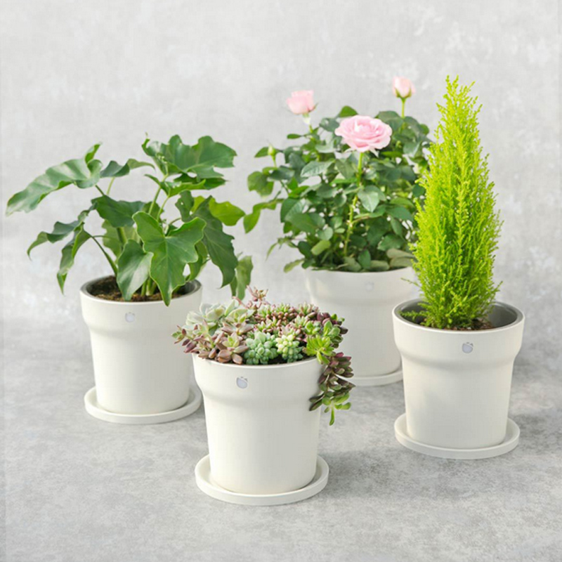Original Xiaomi Flora Smart Flower Pot Monitor Digital Plants Grass Soil Water L